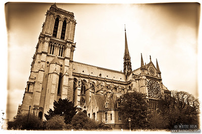 Notre Dame Cathedral -- Black & White Photography by Wayne Heim