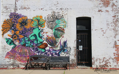 Flower Lady graffiti - Louisville, KY