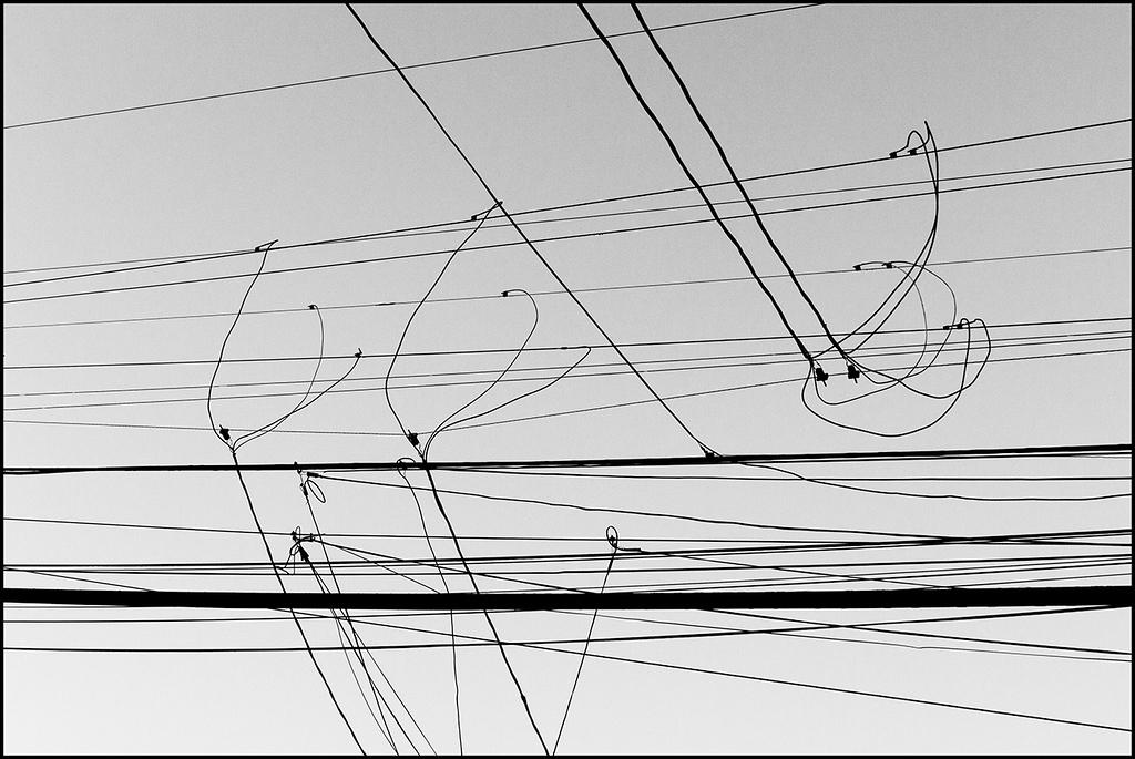 <center><i>Homage à Klee (All a Twitter)</i></center>#4666-7D