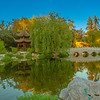 Evening at the Chinese Garden.