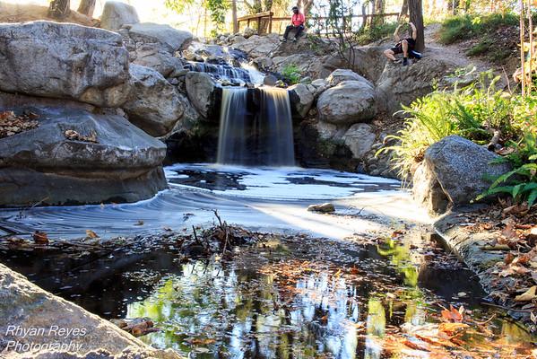Descanso_Gardens_IMG_0397_RRPhotos