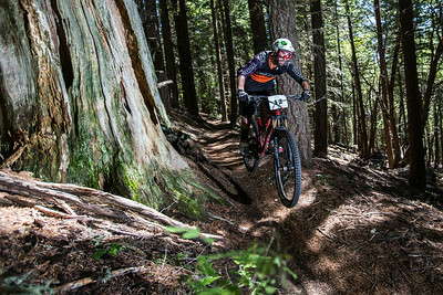Kona's Ryan Gardner rides past a huge old-growth stump on stage #1.