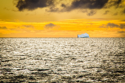 Morning Iceberg at Lancaster Sound