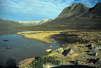 Boyes Sö, Nuqssuaq