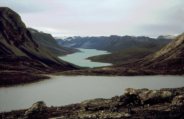 In the center of Nuqsuaq Peninsula, W Greenland