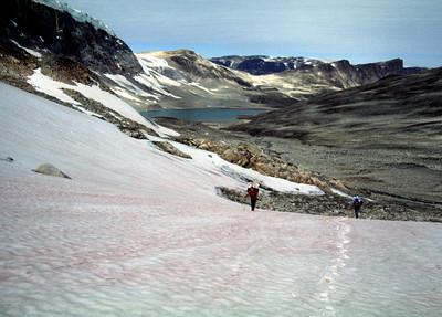 Umataussaq valley, Nuqssuaq