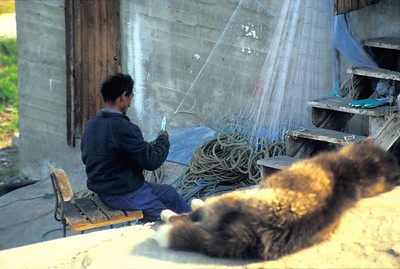 Fisher cleaning fishing gear, Ilulissat, Greenland