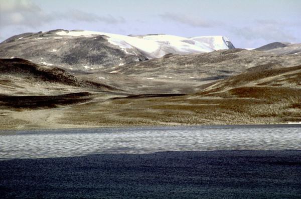 Nuqssuaq's inner barren grounds