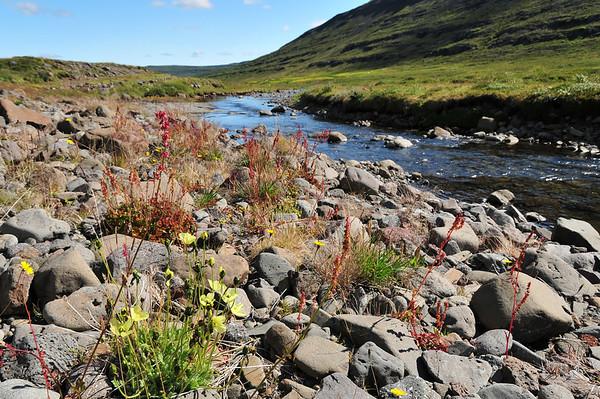 Heydalur in Northwestfjords