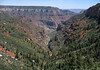 Down Roaring Spring Canyon, to its confluence with the Bright Angel Canyon - to Obi Point (Walhalla Plateau) - Grand Canyon (north rim)