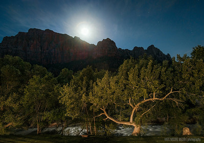 25 second exposure: Moonrise over Zion