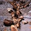 The Log Jam