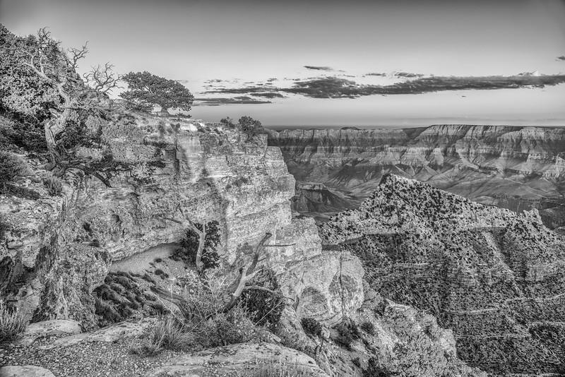 North Rim of the Grand Canyon, Arizona