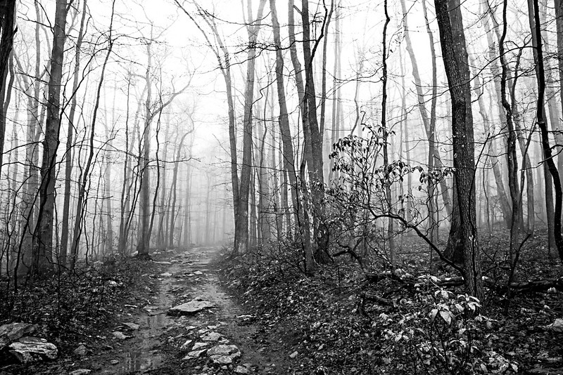 Series - Nowhere on the Appalachain Trail