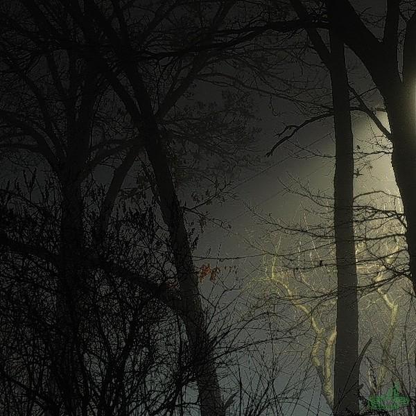 Заліщики 2014, березень, 7.  Вечір...