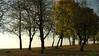 Заліщики.  2014, жовтень, 10.  Верхній парк. За краєм землі - Дністер