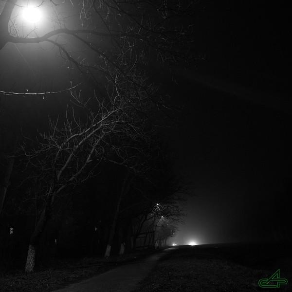 Заліщики 2014, березень, 7.  ... .ніч