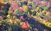 Осінь
