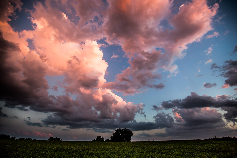 Cotton Candy - Geary County, KS