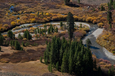 The banks of the upper Big Wood River in late September.