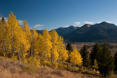 Yellow aspens and a sun star highlight a late September drive over Galena Summit.