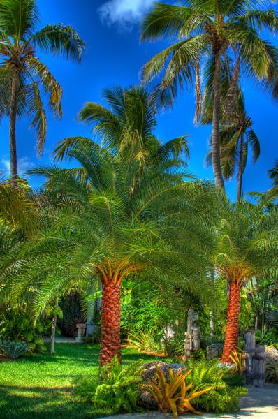 Caribbean Resort,Rislamorada, 5