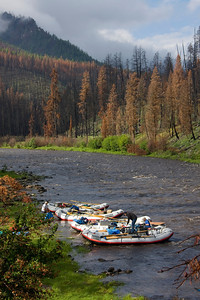 Lake Creek the year after the 2007 fires.