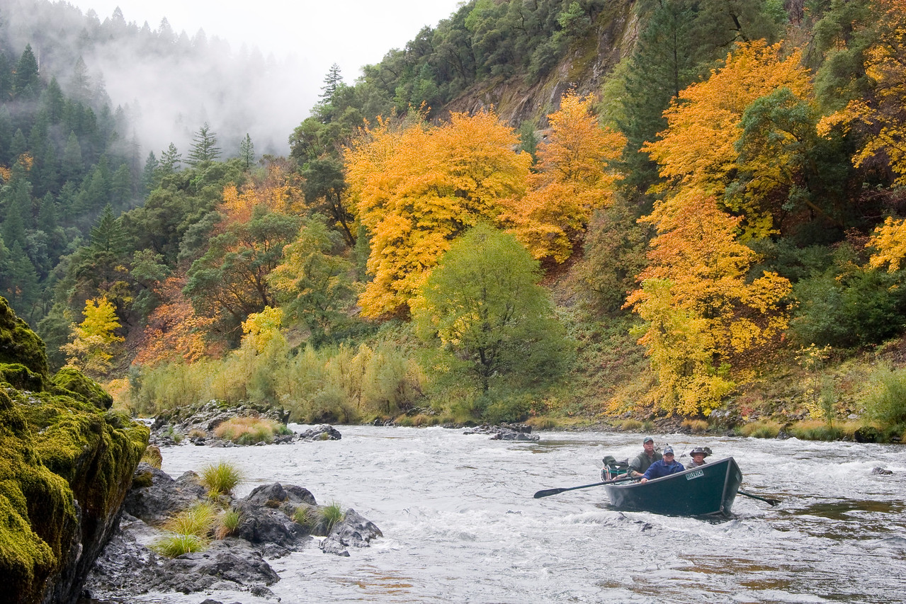 Rain augments the vibrant colors of an October Rogue Canyon.