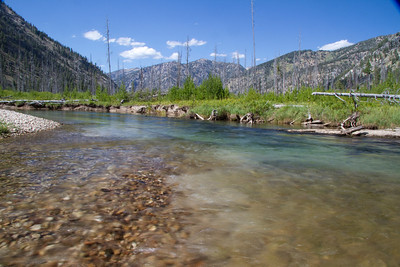The South Fork of the Payetter River near the mouth of Goat Creek
