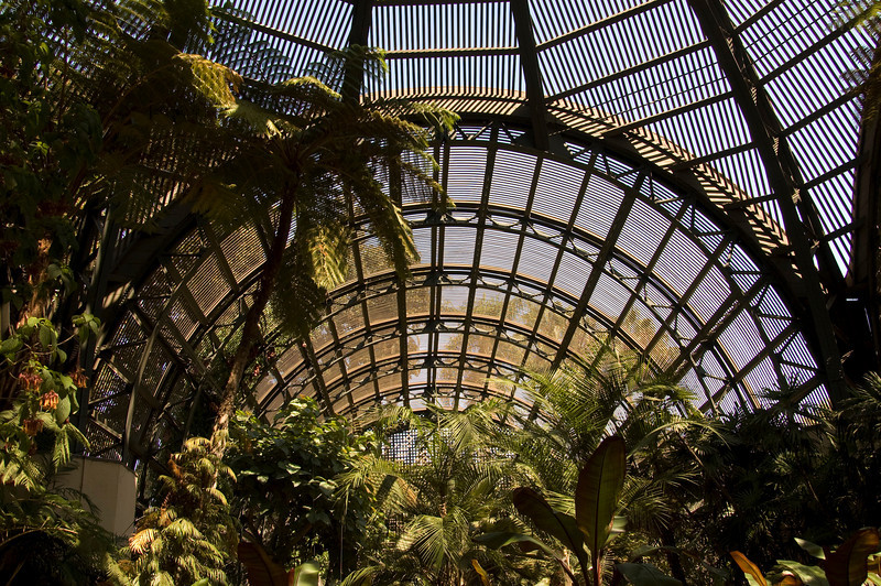 Inside the Conservatory.