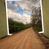 """""""Backroads"""""""