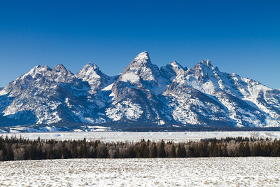 Tetons From Glacier Lookout