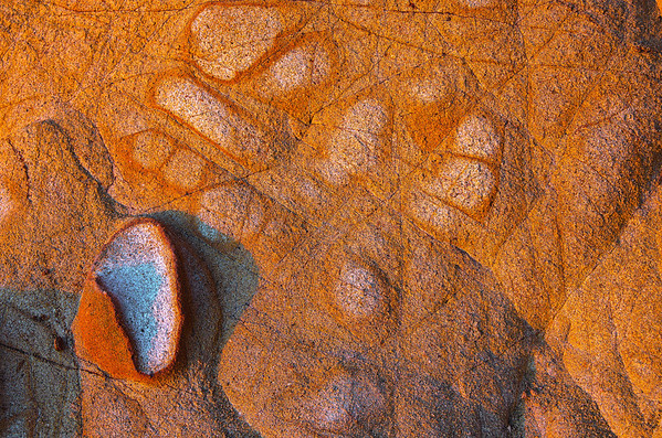 Nature's Pictograph