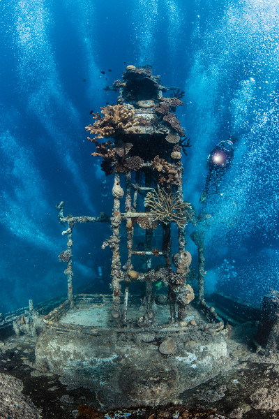 The Upright Wreck in the Solomon Islands