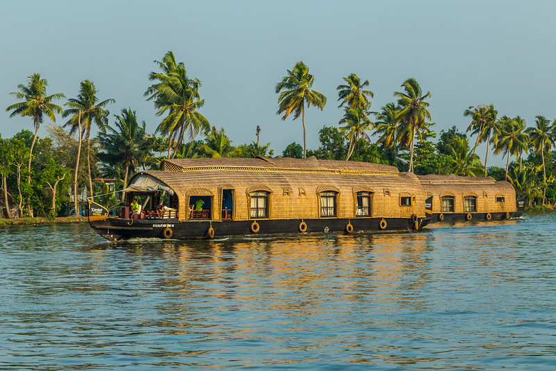 Houseboats in the Kerala Backwaters of South India