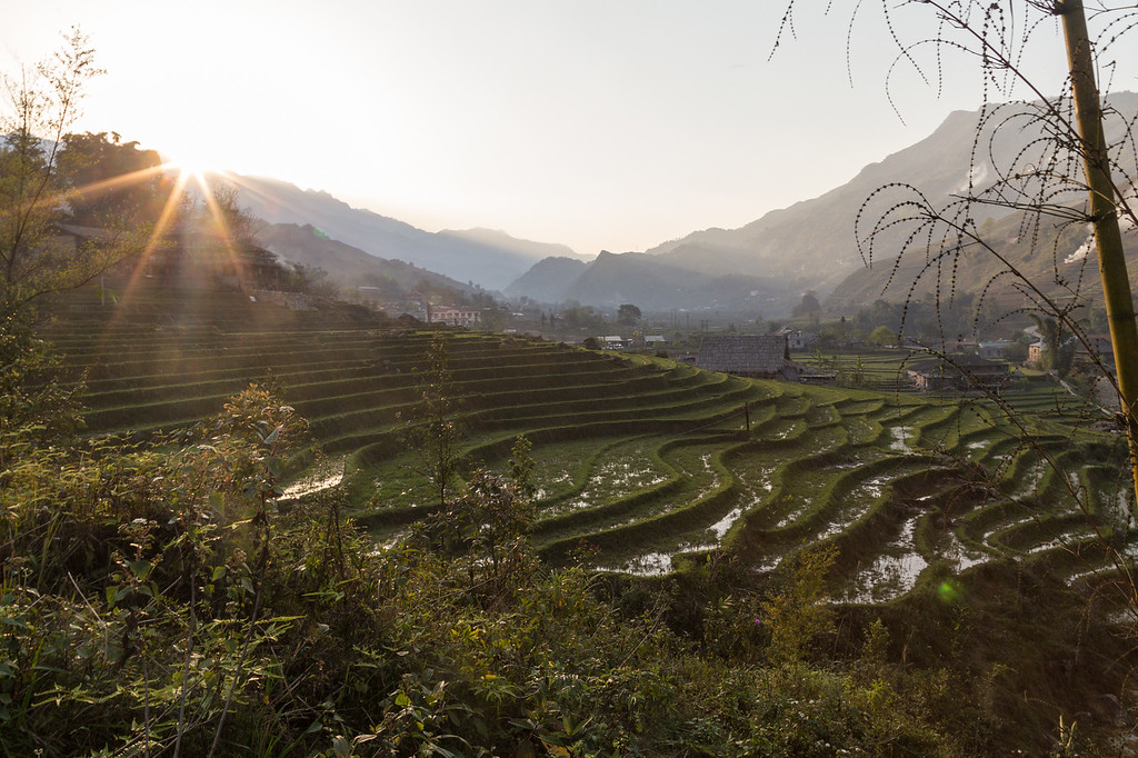 Rice plantations and landscape in Sapa, Vietnam