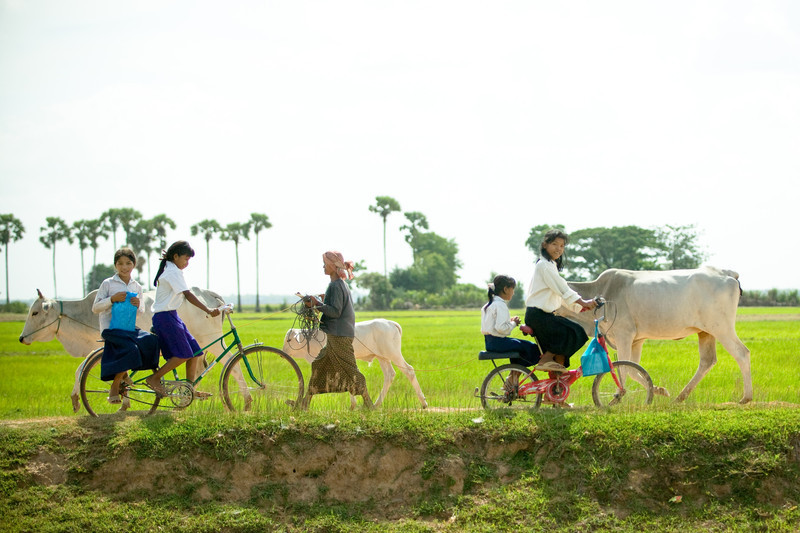 Students from Chanleas Dai make the long ride home to their village after another exciting day learning how to use the school's new XO laptops.