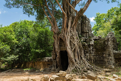 Ta Som temple, Angkor Archeological Park