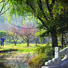 Ming Dynasty Garden<br /> Nanjing, Jiangsu, China<br /> <br /> A devoted street cleaner sweeps the path near the Sacred Path to the Ming Tomb. Situated on the southern slope of Purple Mountain, Nanjing, the Xiaoling Tomb is the resting place of the Emperor Zhu Yuan Zhang, who founded the Ming Dynasty (1368-1644). The garden dates back over six hundred years and covers 7,339 acres.