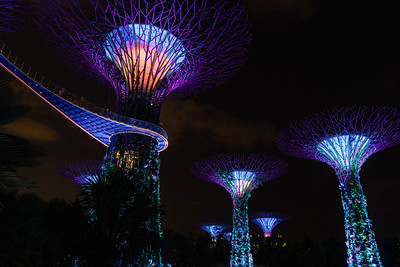 Gardens by the Bay light show 2