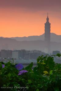 Taipei 101 in Morning Glory #2