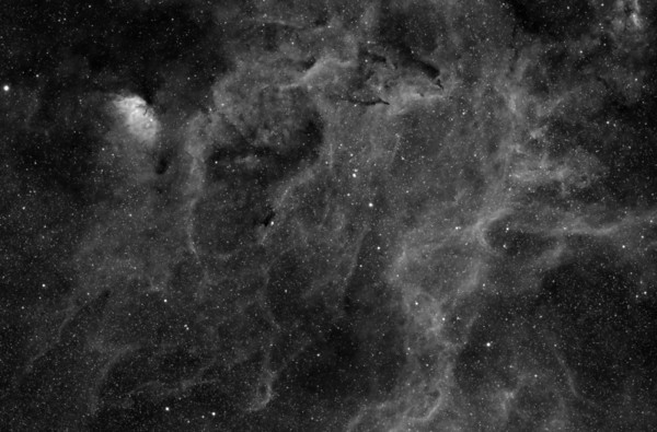 This 3nm Hydrogen-Alpha image consists of a large area of nebulosity in Cygnus.  It contains Sh2-101 (Tulip Nebula), and Barnard  146, 147, NGC 6871 and several other small features.    Date: 9/21/13,  9/23/13  Telescope: Takahashi FSQ-106ED with CAA Mount: Astro-Physics Mach1GTO Guider: Meade DSI Pro through Astrodon MMOAG CCD: Finger Lakes Instruments ML11002 CCD, with 65mm shutter Fiter Wheel: Finger Lakes Instruments CFW-2-7 Filters: Astrodon 3nm Hydrogen Alpha Exposure: 10 x 1800 sec (5 hours)  Software: MaximDL, Registar, Photoshop CS3 with Carboni & GXT Location: Light polluted back yard in El Paso, Texas  Polar Alignment: PoleAlignMax