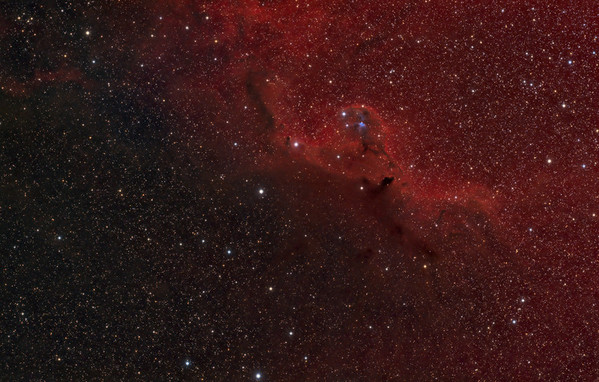 Widefield view of the area around Barnard 30 and Sh2-264  7.5 hours of Ha (15 x 30 minutes) ~2.5 hours of RGB, in 1, 5 & 10 minute exposures.  Date: 1/18/2012, 1/19/2012, 2/15/2012, 2/18/2012  Telescope: Takahashi FSQ-106ED with CAA Mount: Astro-Physics Mach1GTO Guider: Meade DSI Pro through Astrodon MMOAG CCD: Finger Lakes Instruments ML11002 CCD, with 65mm shutter Fiter Wheel: Finger Lakes Instruments CFW-2-7 Filters: Baader 50.8mm 7nm Hydrogen Alpha &, LRGB  Software: MaximDL, Registar, Photoshop CS3 with Carboni & GXT Location: Light polluted back yard in El Paso, Texas   Polar Alignment: PoleAlignMax