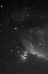 Barnard 33 in 7nm Hydrogen Alpha.   - This is one frame of an 8 frame, 60 megapixel mosaic of the Orion area (seen in the Monochrome Images Gallery)  4 hours of Ha (8 x 30 minutes)  Date: 12/24/10, 12/25/10  Telescope: Takahashi FSQ-106ED with CAA Mount: Losmandy G11 Gemini with Ovision Worm Guider: Meade DSI Pro through Astrodon MMOAG CCD: Finger Lakes Instruments ML11002 CCD, with 65mm shutter Fiter Wheel: Finger Lakes Instruments CFW-2-7 Filters: Baader 50.8mm 7nm Hydrogen Alpha  Software: MaximDL, Registar, Photoshop CS3 with Carboni & GXT Location: Light polluted back yard in El Paso, Texas  Polar Alignment: Optical alignment with Polar scope only