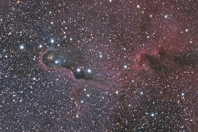 Elephant's Trunk Nebula in Cepheus