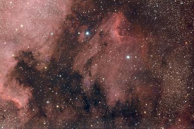 Pelican Nebula (IC 5070) in Cygnus