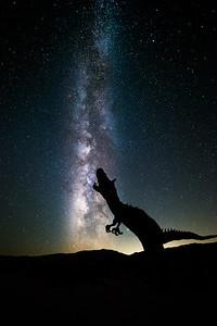Howl at the Galaxy
