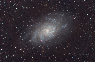 Triangulum Galaxy (M33) in Triangulum
