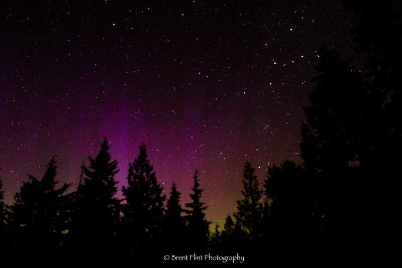 DF.1831 - northern lights, Bonner County, ID.