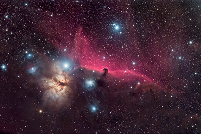 Horsehead and Flame Nebulae and Surrounding Region in Orion